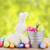 egg hunt stock photo © neirfy