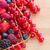 taze · ahududu · kırmızı · frenk · üzümü · böğürtlen - stok fotoğraf © neirfy