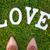 романтические · девушки · любви · письме · портрет · бумаги - Сток-фото © neirfy