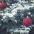 winter with spruice tree stock photo © neirfy