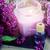 spa · lila · flores · masaje · productos · salud - foto stock © neirfy