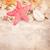 古い紙 · シェル · 古い · 着色した · 紙 · 自然 - ストックフォト © neirfy