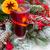 анис · корицей · специи · рождественская · елка · форма · Top - Сток-фото © neirfy