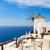 tradicional · griego · pueblo · mar · Grecia · flores - foto stock © neirfy