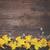 nergis · Paskalya · bahar · arka · plan · hayat · bitki - stok fotoğraf © neirfy