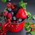 красный · лет · плодов · Ягоды · фрукты - Сток-фото © neirfy