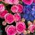 букет · свежие · розовый · роз · синий · цветы - Сток-фото © neirfy