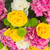 Bush · róż · jasne · lata · dzień · kwiaty - zdjęcia stock © neirfy