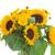 花瓶 · 黄色 · ひまわり · 花束 · 花 - ストックフォト © neirfy