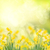 нарциссов · весны · саду · трава · газона · желтый - Сток-фото © neirfy