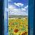 открытых · дверей · зеленый · области · новых · способом · вход - Сток-фото © neirfy