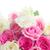 buquê · fresco · rosas · monte · rosa · branco - foto stock © neirfy
