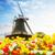 moulin · à · vent · domaine · tulipes · Pays-Bas · ciel · fleur - photo stock © neirfy