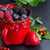 taze · organik · siyah · frenk · üzümü · kupa · lezzetli - stok fotoğraf © neirfy