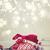 karácsony · ünnep · keret · bogyók · kép · illusztráció - stock fotó © neirfy