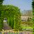 春の花 · オランダ · 庭園 · カラフル · 春 · 緑 - ストックフォト © neirfy