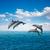 atlama · yunuslar · güneşli · deniz · manzarası · derin · okyanus - stok fotoğraf © neirfy