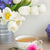 тюльпаны · сирень · белый · Пасху · фон · подарок - Сток-фото © neirfy