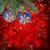 christmas ball hanging on evergreen tree stock photo © neirfy