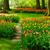 pedra · caminho · jardim · flor · da · primavera · florescimento · flores - foto stock © neirfy
