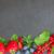 свежие · Ягоды · зеленые · листья · изолированный · белый - Сток-фото © neirfy