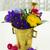 uzdrowienie · kwiaty · zioła · używany · naturalnych · medycyny · alternatywnej - zdjęcia stock © neirfy