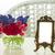 jacinto · fresco · flores · luz · cinza · páscoa - foto stock © neirfy