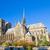 Catedral · de · Notre · Dame · Paris · França · igreja · vista · lateral · céu - foto stock © neirfy