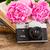 新鮮な · 花 · ピンク · 花瓶 - ストックフォト © neirfy