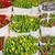 színes · tulipánok · piac · vásár · virág · esküvő - stock fotó © neirfy