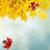 sekély · fókusz · fényes · piros · levelek · kék · ég - stock fotó © neirfy