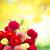 dahlia · bloemen · boeket · vers · gemengd · hemel - stockfoto © neirfy