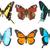 tropische · vlinders · ingesteld · kleurrijk · rij · geïsoleerd - stockfoto © neirfy