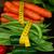 radiação · cenoura · natureza · vegetal · solo - foto stock © neirfy