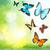tropical · borboletas · coleção · belo · isolado · branco - foto stock © neirfy