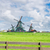 オランダ語 · 風 · 伝統的な · 風景 · 風車 · 秋 - ストックフォト © neirfy