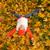 sevimli · küçük · kız · sonbahar · yaprakları · yüz · mutlu · gözler - stok fotoğraf © Nejron