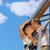 piękna · para · całując · Błękitne · niebo · kobieta · plaży - zdjęcia stock © nejron