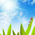 serein · ensoleillée · domaine · prairie · printemps · heureux - photo stock © nejron