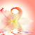 piękna · pachnący · różowy · wody · lilia - zdjęcia stock © nejron