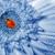 mariquita · flor · blanca · pie · primavera · naturaleza · jardín - foto stock © nejron