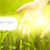 человека · рук · прикасаться · зеленая · трава · солнце · лист - Сток-фото © nejron