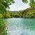лес · озеро · аннотация · природного · фоны - Сток-фото © nejron