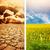 экологический · катастрофа · атмосфера · Vintage · телевидение · текста - Сток-фото © nejron