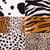 cheetah · huid · mode · kat - stockfoto © nejron