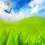 高い · 画像 · 新鮮な · 緑の草 · 青空 - ストックフォト © nejron