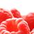 maliny · słodkie · skupić · front · owoców - zdjęcia stock © nejron