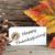 feliz · ação · de · graças · cartão · cartaz · isolado · texto - foto stock © nelosa