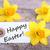 тег · Христос · воскрес · бирюзовый · Tulip · цветы · древесины - Сток-фото © nelosa