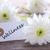 tag · benessere · legno · fiori · bianchi · salute · nastro - foto d'archivio © Nelosa
